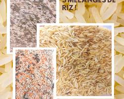 3 nouveaux riz - Un Monde en Vrac - Marennes